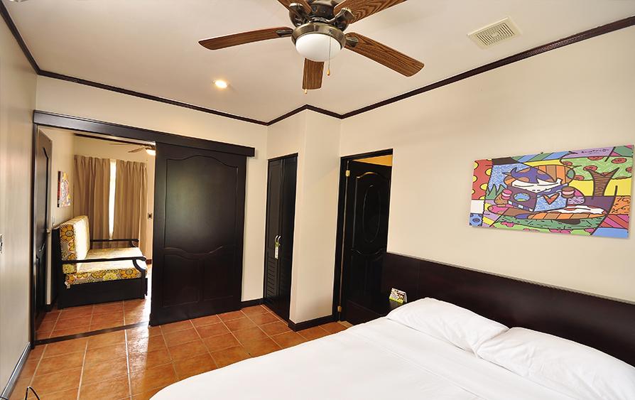 Habitación Deluxe con Sofa cama